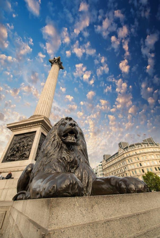 Lion Statue y Nelson Column en la opinión ascendente de Trafalgar Square fotografía de archivo