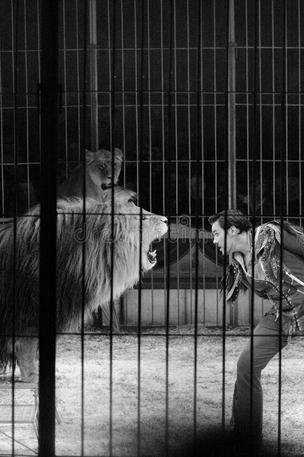 Download Lion Tamer Circus Act Editorial Photo - Image: 14199426