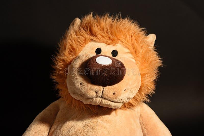 Lion toy portrait.