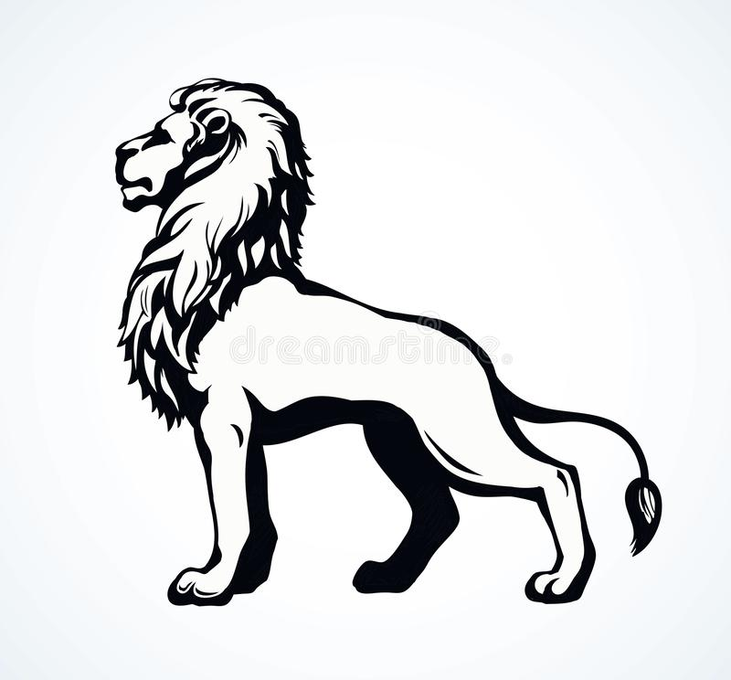 Lion Vector Drawing Stock Vector Illustration Of Drawn 146850599 Free for commercial use no attribution required high quality images. lion vector drawing stock vector