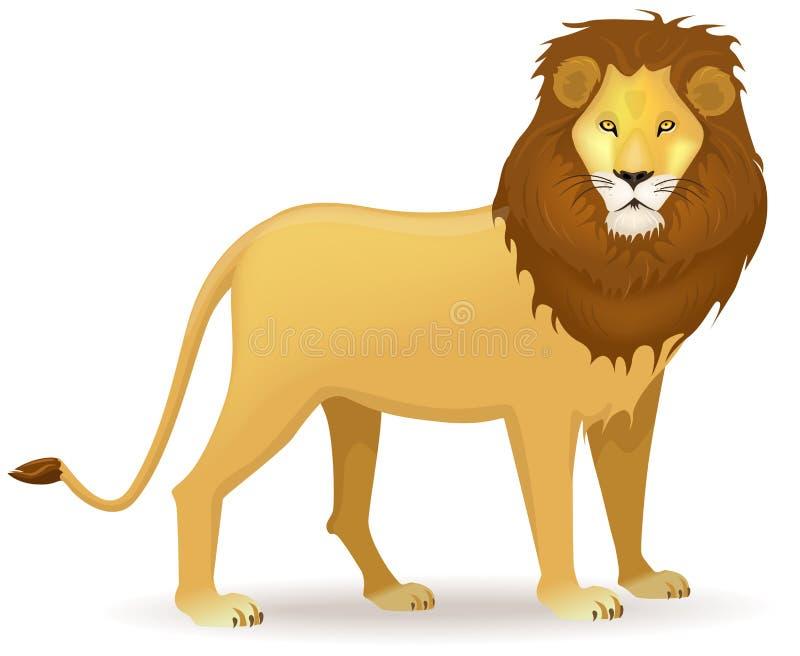 Lion stock illustration
