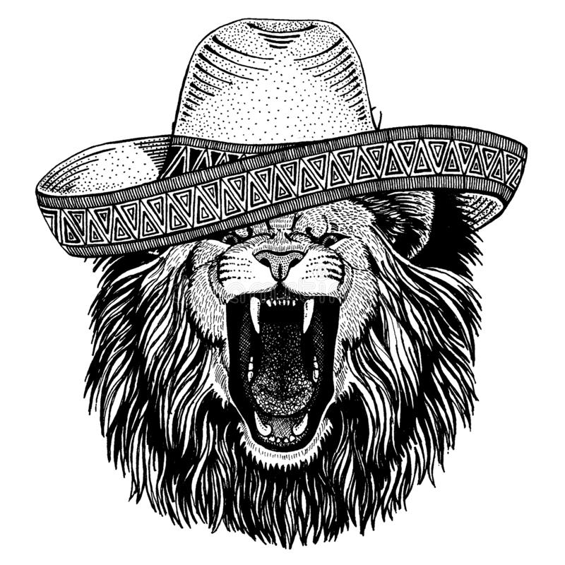 Lion wearing traditional mexican hat. Classic headdress, fiesta, party. Lion wearing traditional mexican hat. Classic headdress, fiesta, party royalty free illustration