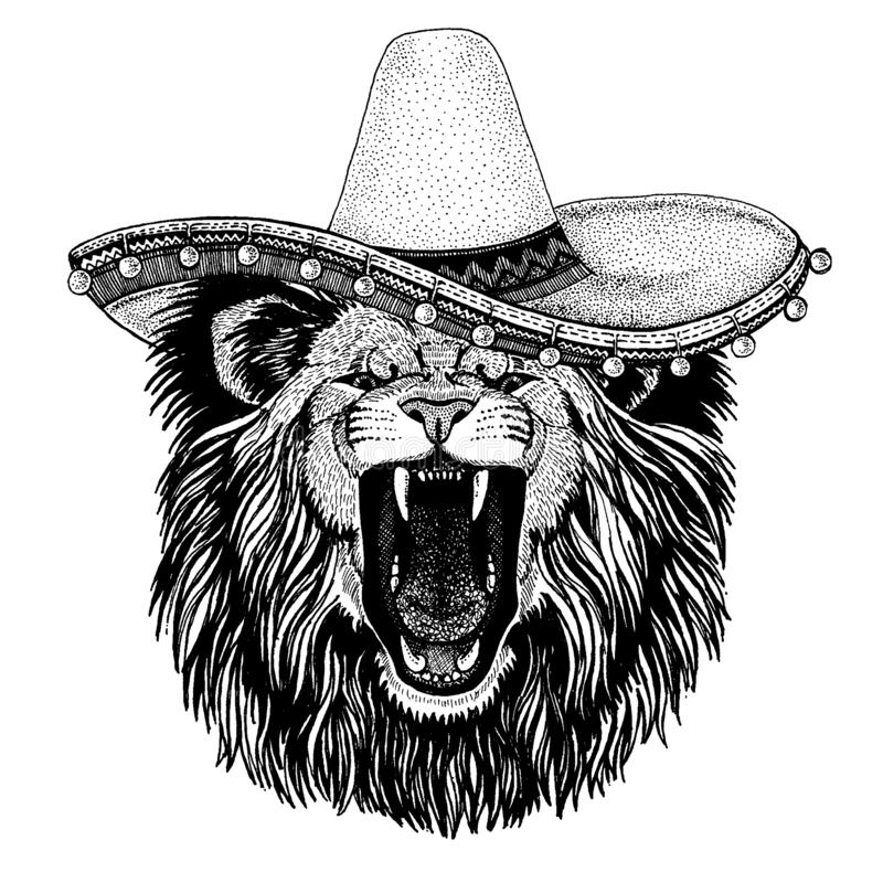 Lion wearing traditional mexican hat. Classic headdress, fiesta, party. Cool animal wearing national mexican hat Sombero vector illustration