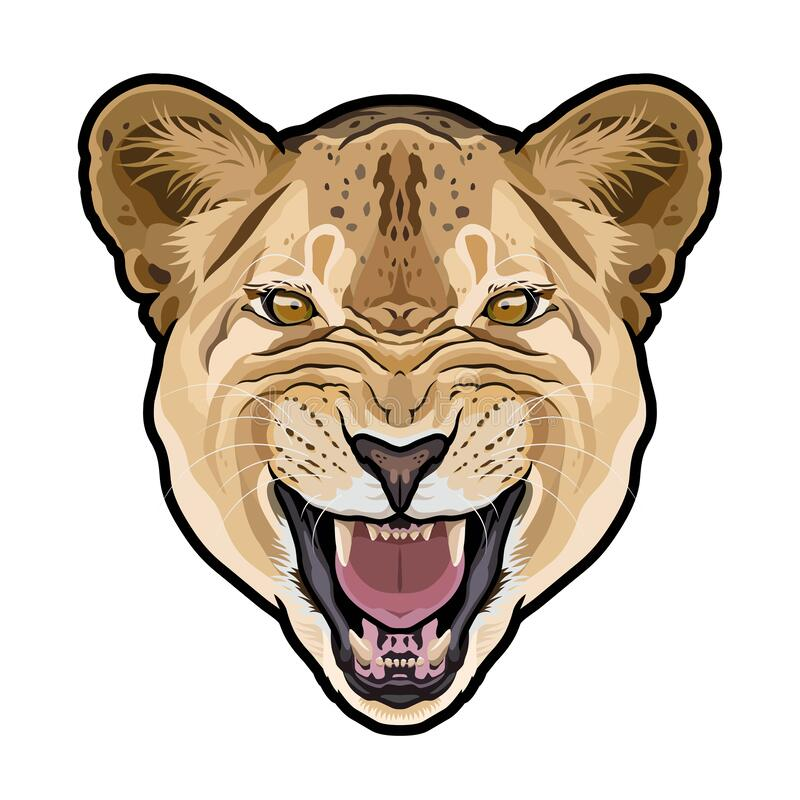 Free Lioness Animal Cute Face. Vector African Wild Lion Cat Head Portrait. Stock Photo - 170758030