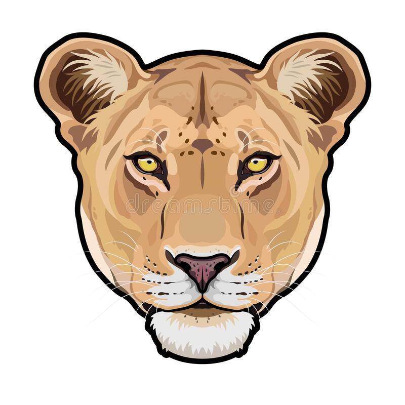 Free Lioness Animal Cute Face. Vector African Wild Lion Cat Head Portrait. Realistic Fur Portrait Of Lioness Royalty Free Stock Photo - 170849925