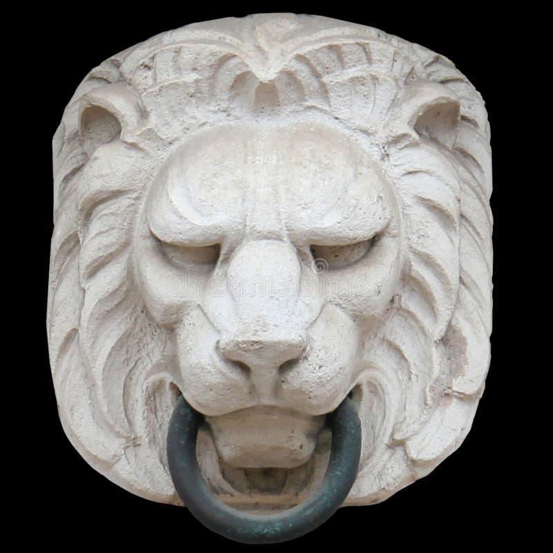 lionhead2 royalty free stock photo