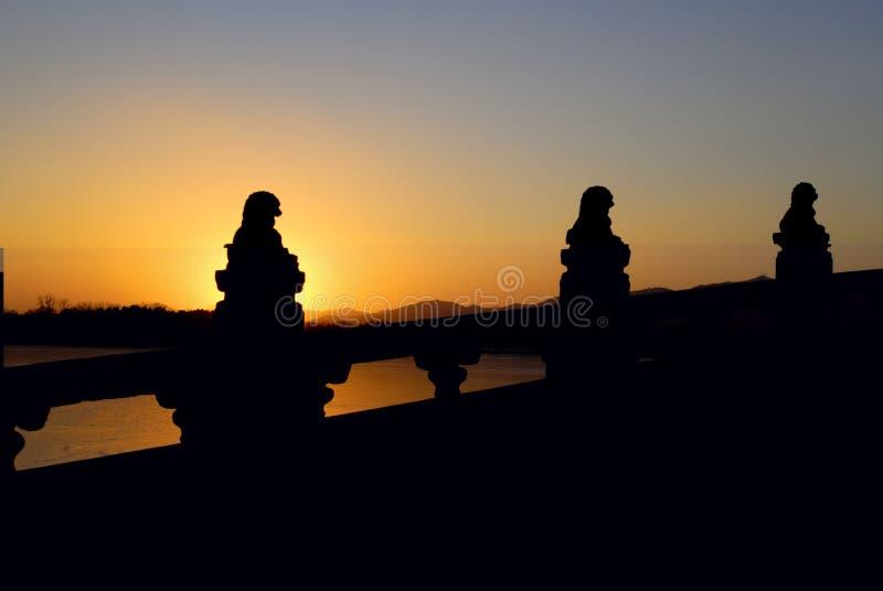 Lions en pierre dans le coucher du soleil photo libre de droits