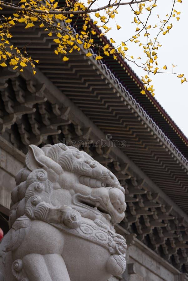 Lions en pierre devant le temple photos libres de droits