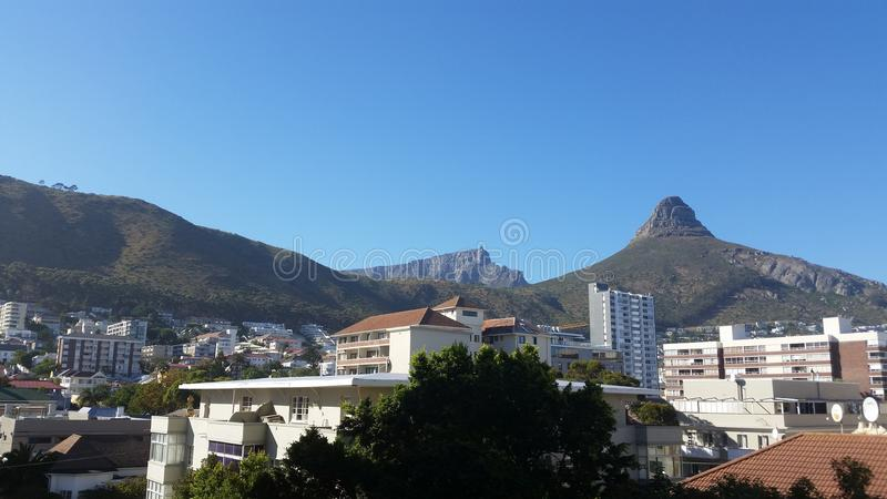 Lions Head royalty free stock photography