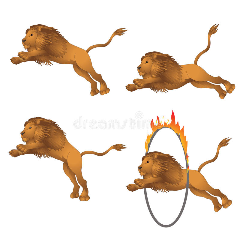 Download Lions in the jump stock vector. Image of aggression, pets - 32270707