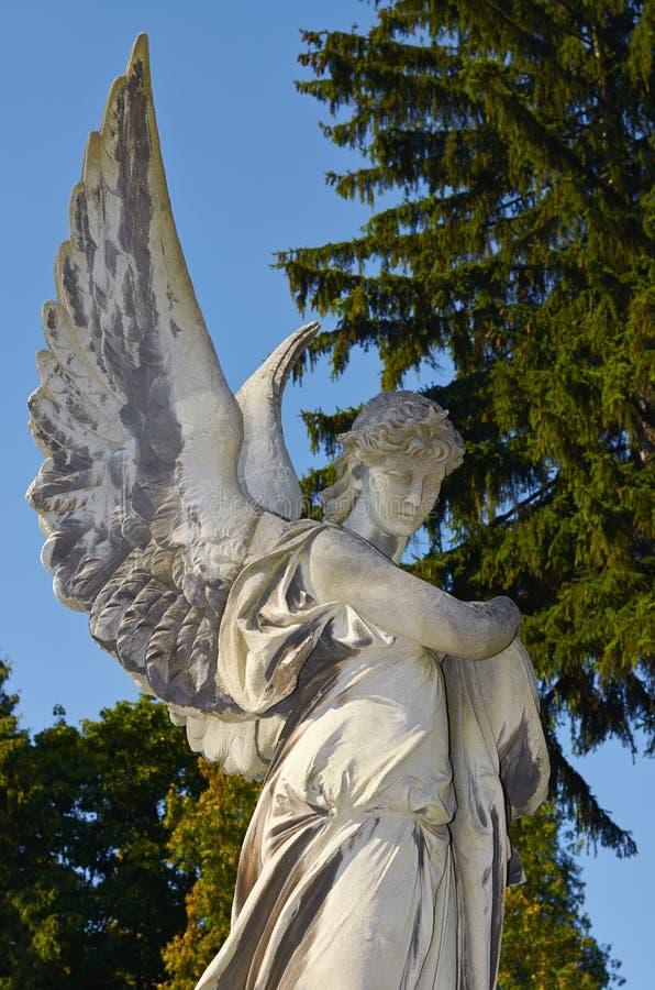 lions Lviv kyrkogård royaltyfria bilder