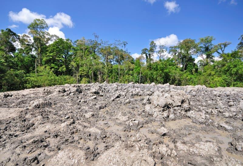 Lipad泥火山,沙巴婆罗洲 免版税库存图片