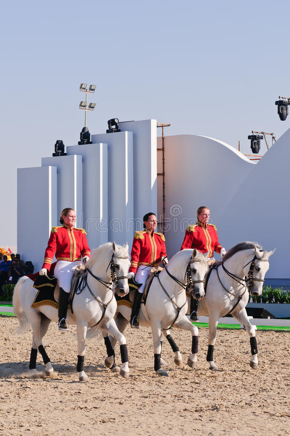 Download Lipizzan Stallions show editorial photography. Image of lipizzan - 17760527