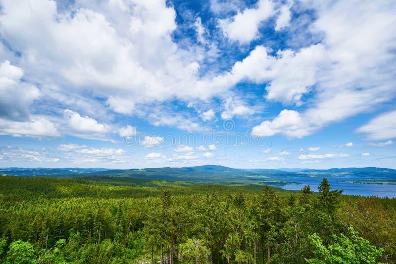 Lipno de sumava de montagne de forêt de ciel bleu photo libre de droits