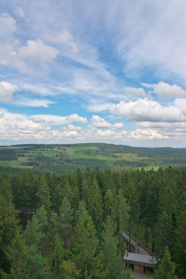 Lipno - vista della passeggiata della cima dell'albero fotografia stock libera da diritti
