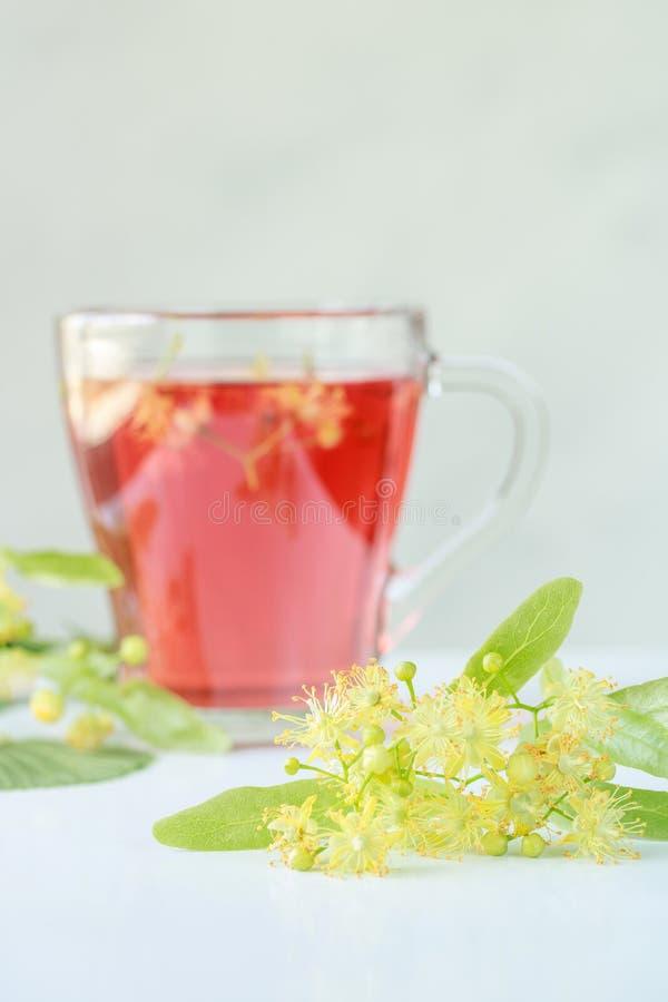 Lipowi kwiaty z warzącą lipową herbatą w tle fotografia stock