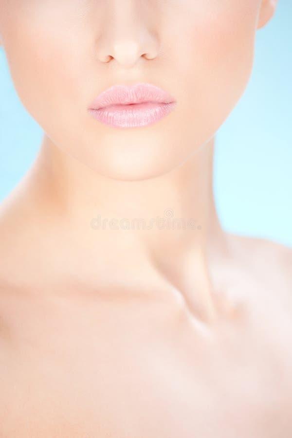 Lippen der Frau stockbild
