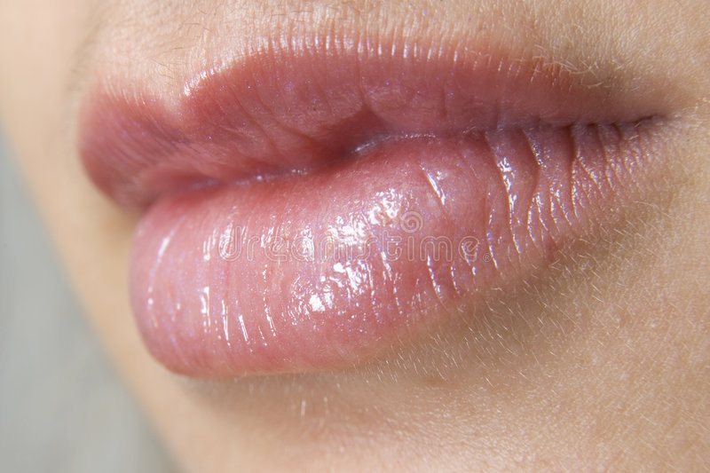 Lips royalty free stock images