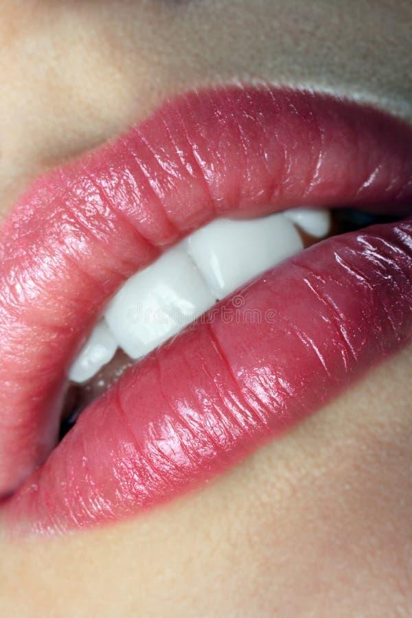 Lips stock photos