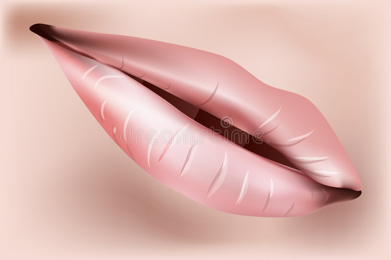 Download Lips Illustration stock vector. Image of moist, luscious - 5580450