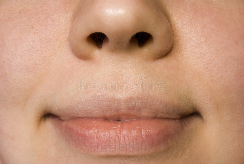 Lips of the mouth. Labia oris, nose, fase, smile, woman, girl, miss royalty free stock images