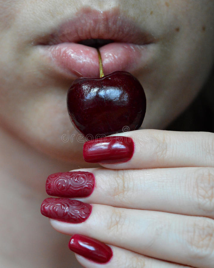 Parted plump lips with berry black cherry. Parted female lips playfully holds the stalk of the berry cherry. The woman raised a beautiful manicure to match the royalty free stock images