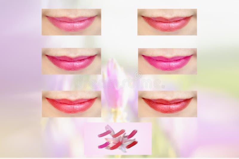 LipstickOrganicCosmetics per cura di pelle del labbro, rossetto cosmetico naturale di trucco fotografie stock