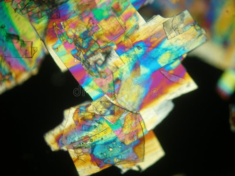 Liquid crystal under polarized light microscope stock images