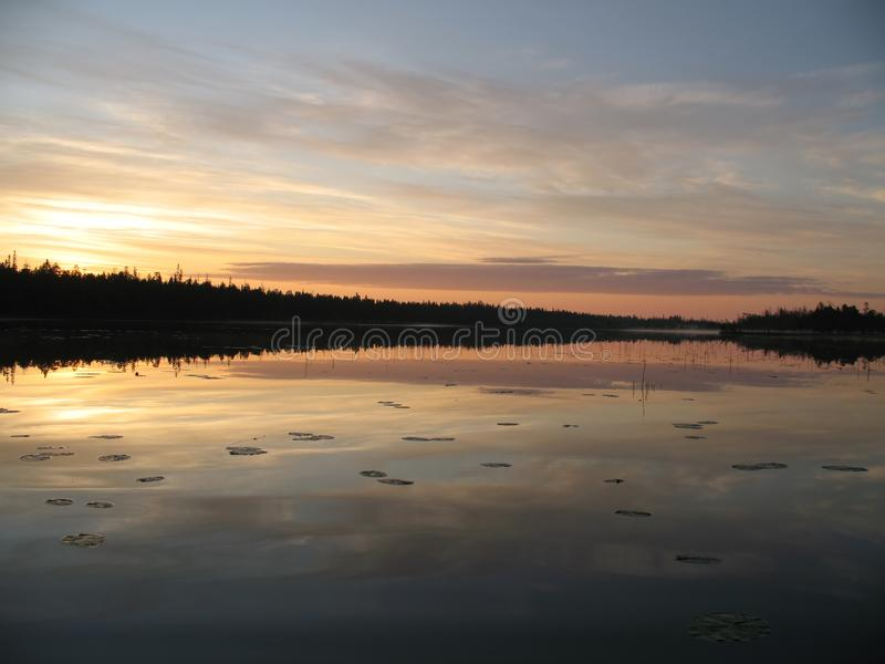 Lirio de agua en un amanecer imágenes de archivo libres de regalías