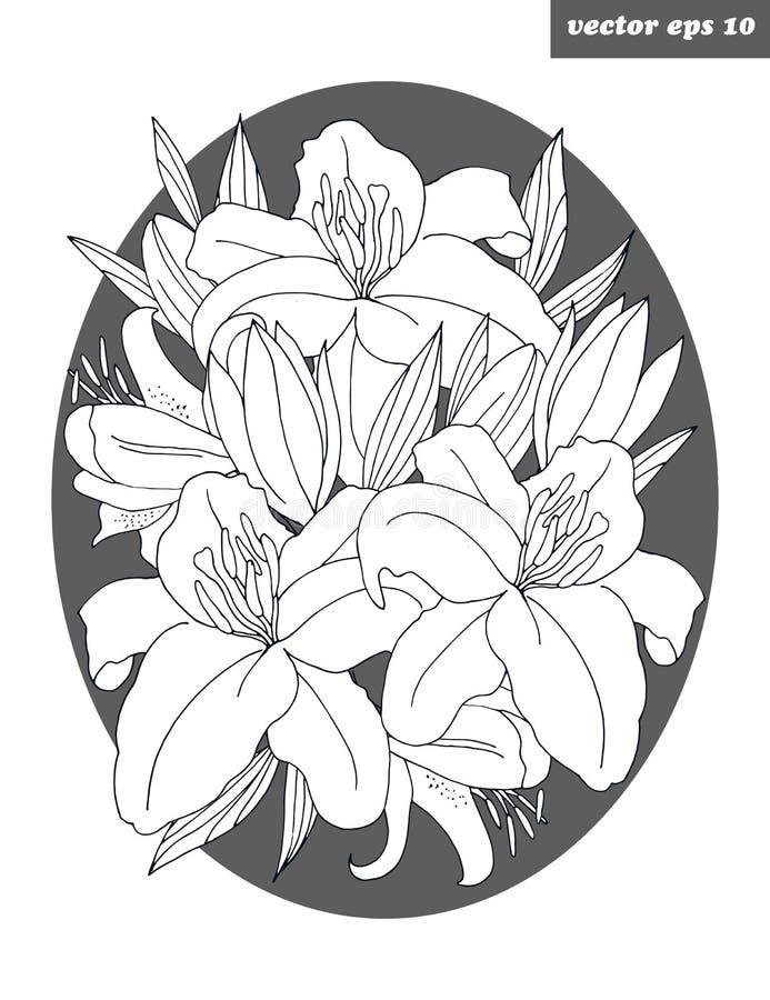 Lirio de la flor stock de ilustración