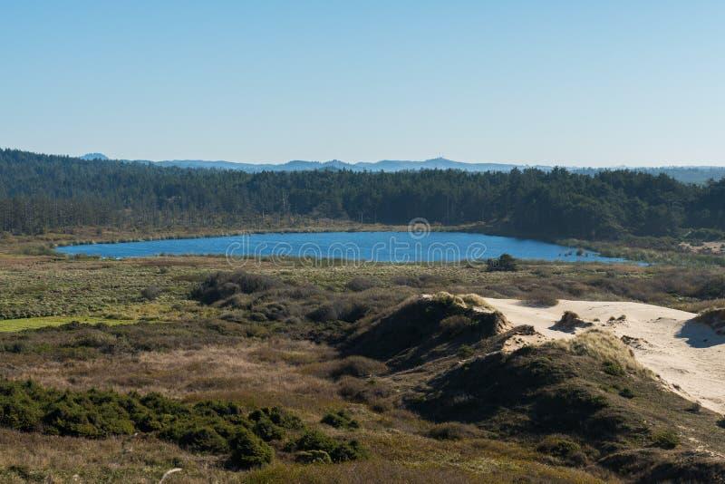 Lirio del lago visto de una curva de la carretera 101 de la costa foto de archivo