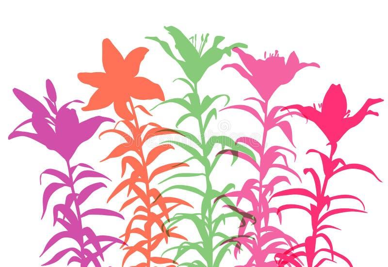 Lirios brillantemente coloreados stock de ilustración