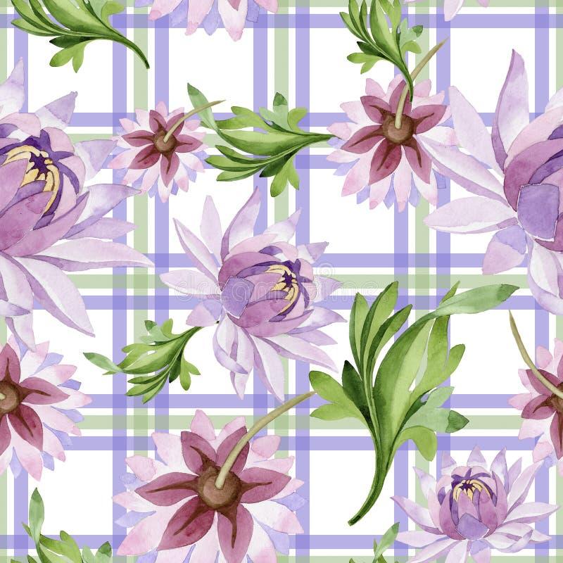 Lis d'eau rose Fleur botanique florale Modèle sauvage de wildflower de feuille de ressort illustration libre de droits
