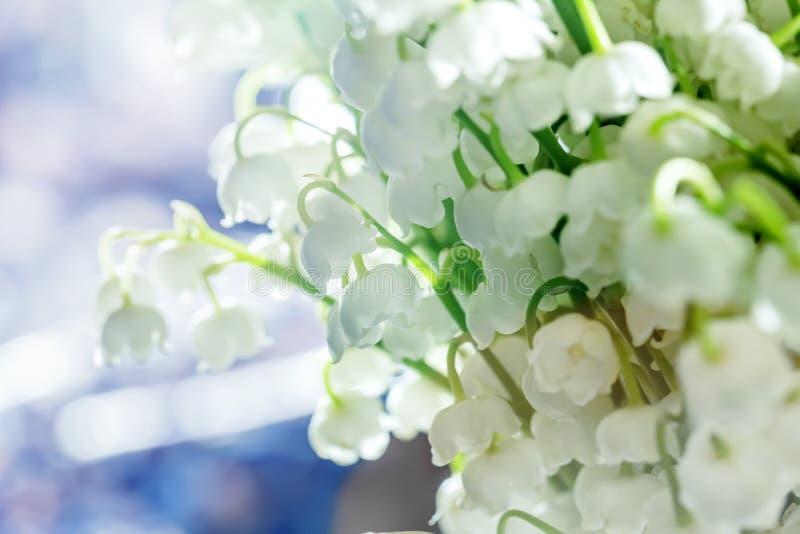 Download Lis de la vallée photo stock. Image du symboles, fleurs - 56484762