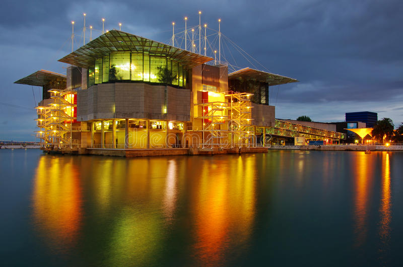 Lisbon Oceanarium stock photography