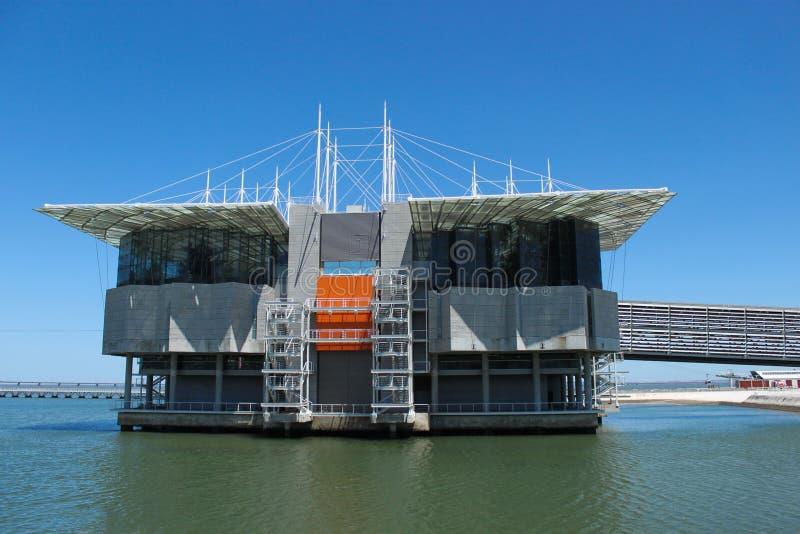 Lisbon Oceanarium stock photo