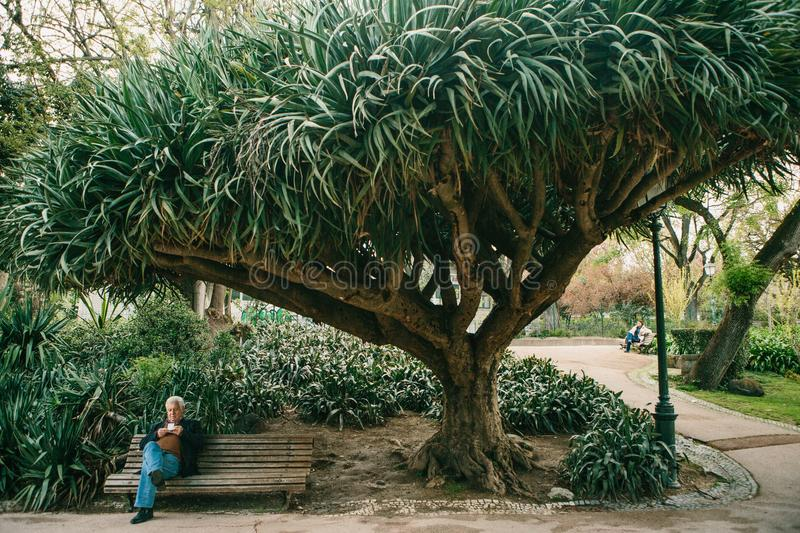 Lisbon, Portugal 01 may 2018: lonely people in garden under trees. Lonely man waits his woman and wait for acquaintance. Loneliness and a privacy in garden or stock photo