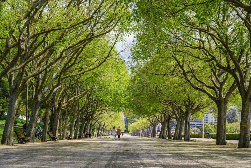 Lisbona, Portogallo, Eduardo VII Park fotografie stock