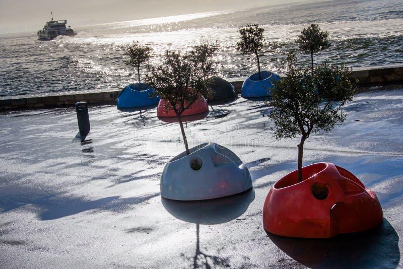 LISBONA, PORTOGALLO - 28 gennaio 2011: strutture alle piante ospiti a immagine stock