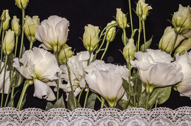 Lisianthus白花与白色透雕细工被绣的边界的在黑胶合板 库存照片