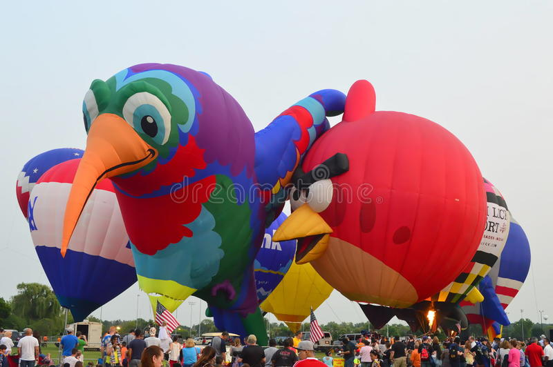 Lisle气球-对天空节日的眼睛 免版税库存图片
