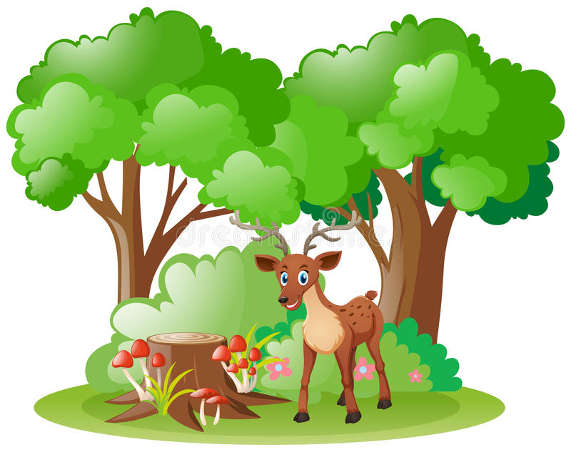 Lisma lite i skogen royaltyfri illustrationer