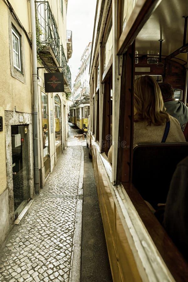 Lissabon Portugal, 2015 04 17 - gamla gula spårvagnar som står i trafik, sikt från öppet fönster royaltyfri bild
