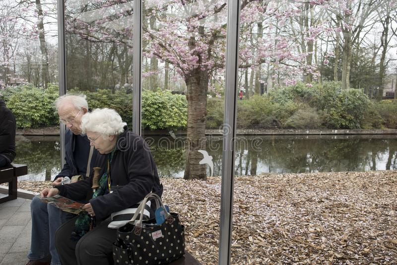 Elderly couple sitting on a bench in a greenhouse in a botanical garden royalty free stock photo