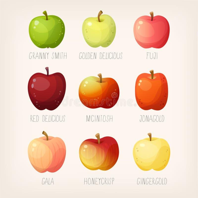 Lista de maçãs ilustração royalty free