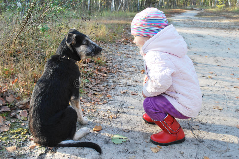 So! Listen to ME! Training a dog Little Girl in a birch forest. stock image