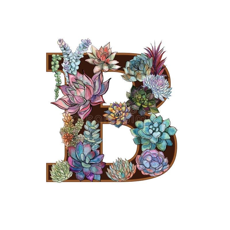 Listowy b sukulenty alfabet akwarela grafit royalty ilustracja