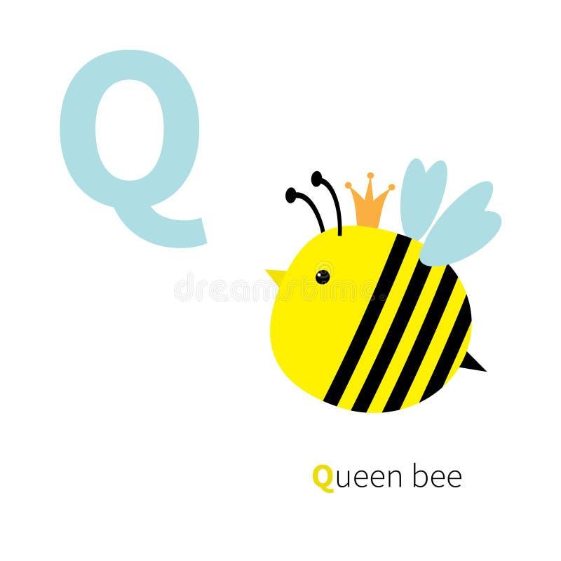 Listowy Q królowej pszczoły zoo abecadło Angielszczyzny abc z zwierzę edukaci kartami dla dzieciaka Białego tła Płaskiego projekt ilustracja wektor