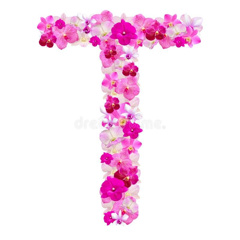 Listowy T od orchidea kwiatów odizolowywających na bielu zdjęcia stock