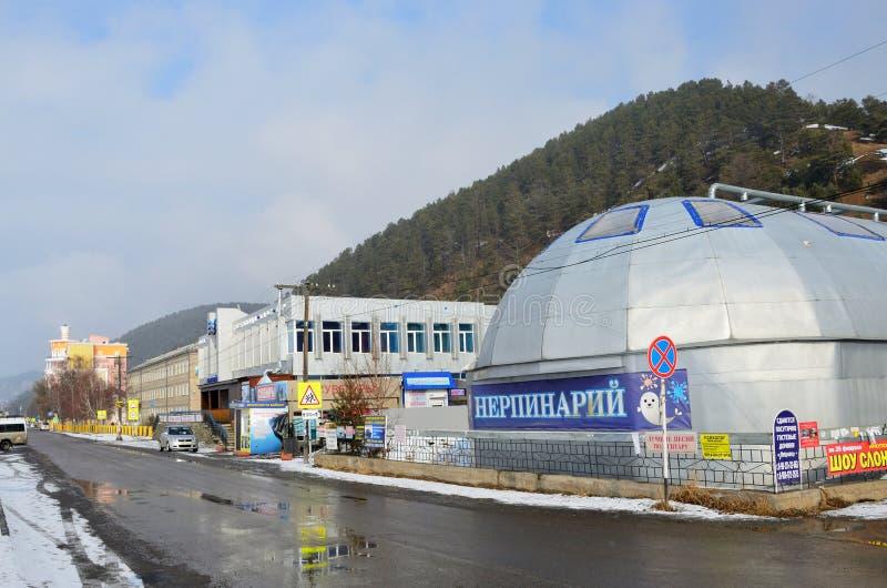Listvyanka, Rusland, 02 Maart, 2017 Nerpinaryverbinding in Listvyanka in de winter stock fotografie